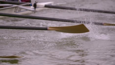 Rowing-Team-Oars-Close-Up-2