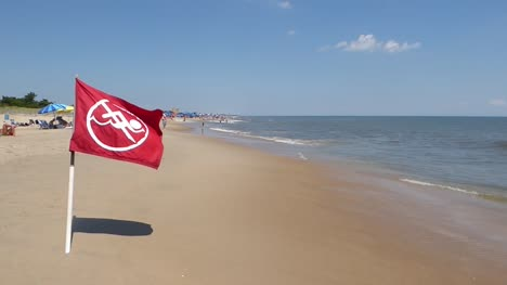 No-Swimming-Flag-on-Beach