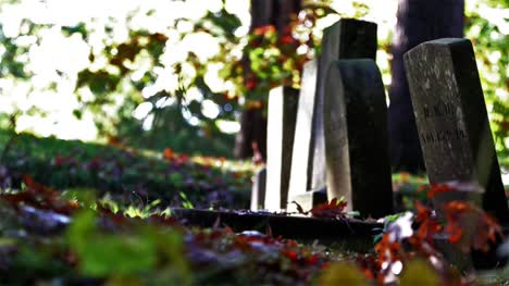 Autumn-Cemetery