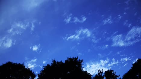 Sky-Over-Trees-Timelapse