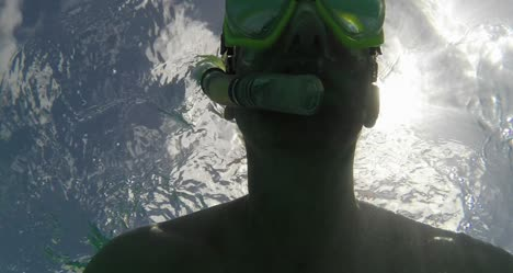 Snorkelling-in-Guadeloupe-03