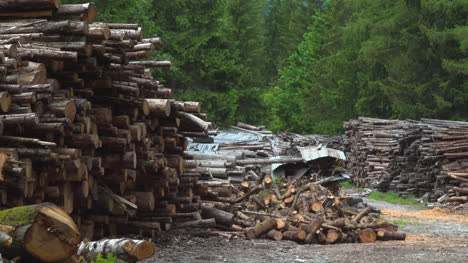 Woodpile-Medium-Wide