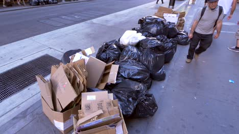 Rubbish-Bags-on-the-Sidewalk-in-New-York-