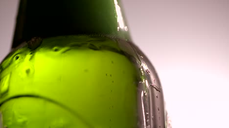Beer-Bubbles-Close-Up-2