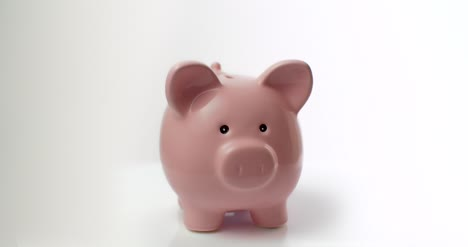 Piggy-Bank-on-White-Background-2