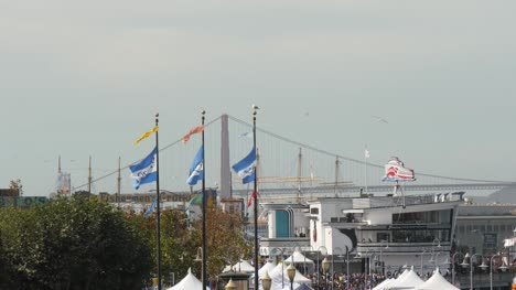 Pier-39-Flags-Flying-in-San-Francisco