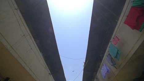 Tracking-Shot-of-Eagles-Flying-Over-Street