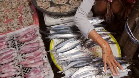 Woman-Arranging-Fish-at-a-Market-Stall