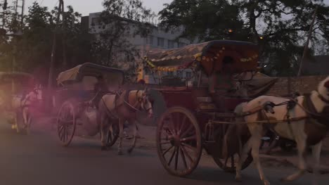 Horse-Drawn-Carriages-in-India-at-Dusk