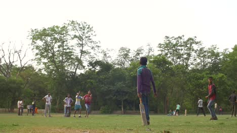 Game-of-Cricket-in-an-Indian-Park