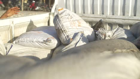 Person-Unloading-a-Sack-into-a-Truck
