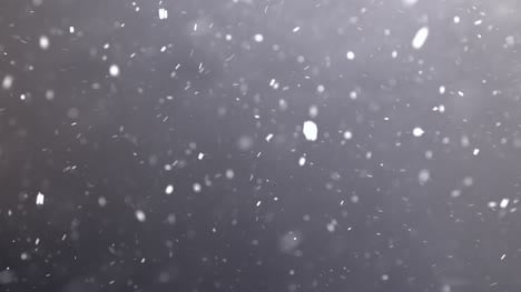 Swirling-Snowfall-Against-Black-Background