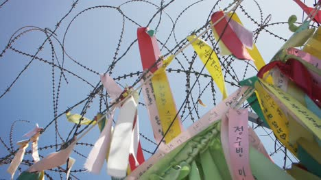Peace-Ribbons-and-Barbed-Wire
