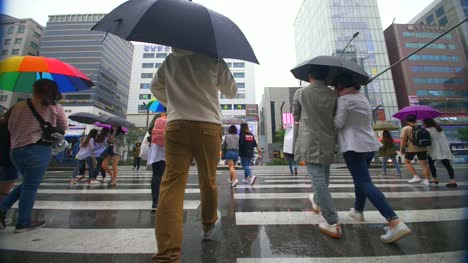 People-Crossing-the-Street-in-the-Rain
