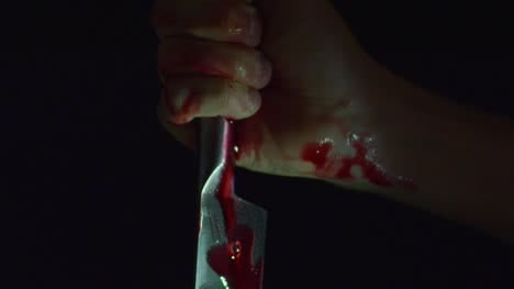 Bloody-Knife-and-Hand-Stabbing