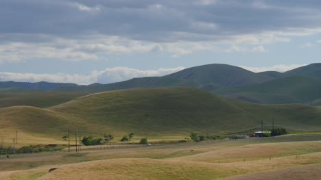 Rolling-Green-Hills-in-California
