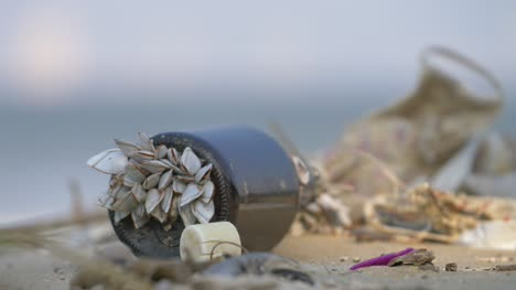 Barnacles-on-a-Glass-Bottle