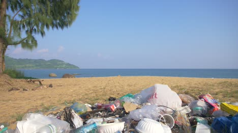 Plastic-Trash-in-Idyllic-Beach-Scene