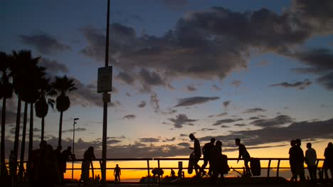 Silhouetted-Skateboarders-at-Venice-Beach