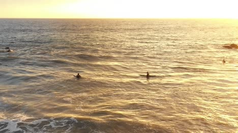 Surfers-In-The-Ocean-At-Venice-Beach