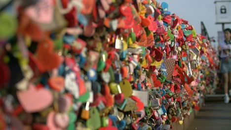 Pull-Focus-Along-Love-Locks-Seoul-Tower
