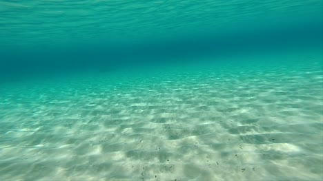 Swimming-Along-Seabed-POV-02
