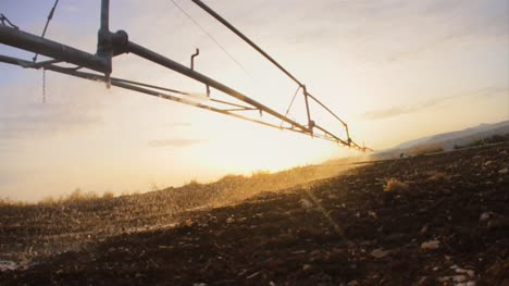 Irrigation-Sprinkler-at-Sunset