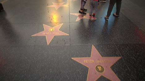 Tracking-Along-Walk-of-Fame