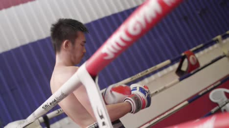 Muay-Thai-Boxer-in-Boxing-Ring