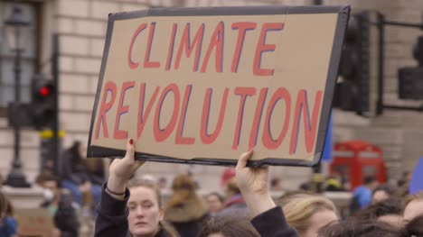 Climate-Revolution-Protest-Sign-
