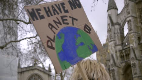 We-Have-No-Planet-B-Protest-Sign
