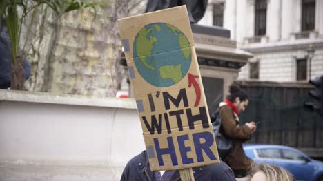 I-m-With-Her-Climate-Change-Protest-Sign