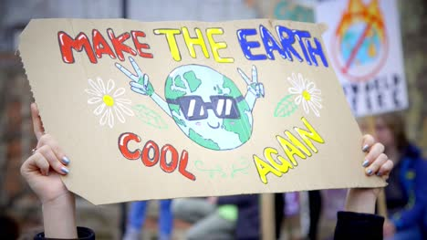 Make-the-Earth-Cool-Again-Protest-Sign