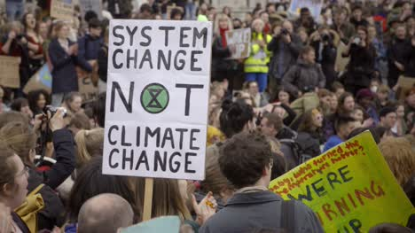 System-Change-Not-Climate-Change-Sign