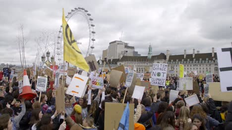 Large-Protest-Crowd-Near-London-Eye