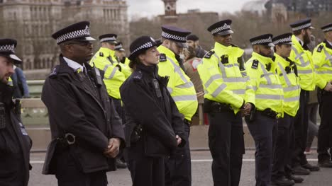 UK-Police-Officers-in-a-Row