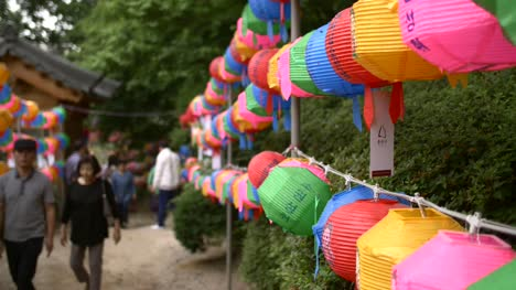 Colourful-Lanterns-Lining-Path