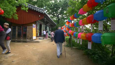 Old-Man-Walking-Along-Colourful-Pathway