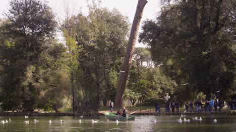 Wide-Shot-Of-Park-Villa-Borghese-Lake