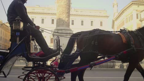 Slow-Motion-of-Horse-and-Carriage
