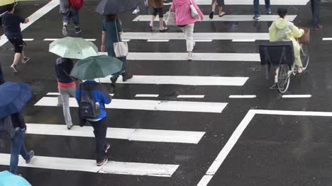 People-Crossing-Road