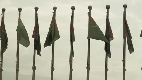Row-Of-Turkmenistan-Flags