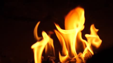 Flames-Close-Up