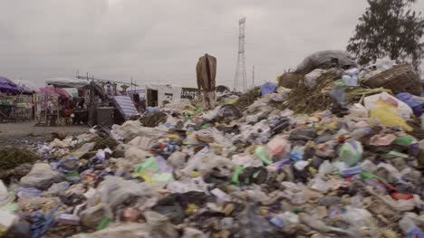 Horse-on-Rubbish-Pile-Nigeria-07