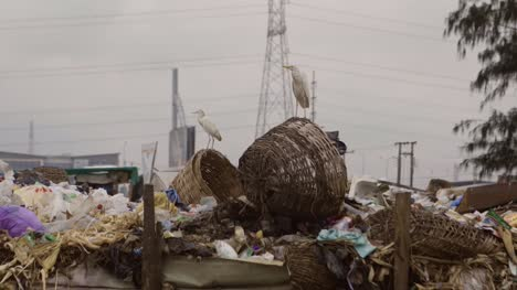 Rubbish-Pile-Nigeria-