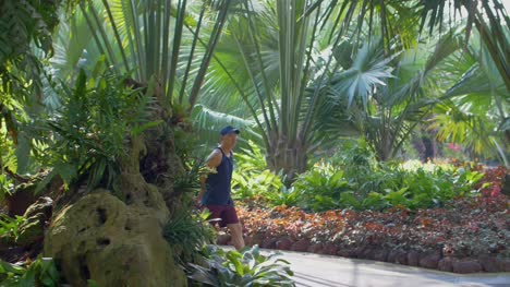 Man-Walking-Through-Tropical-Gardens