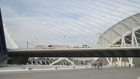 Pedestrians-Under-Cable-Bridge