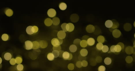 Twinkling-Lights-Creating-Bokeh