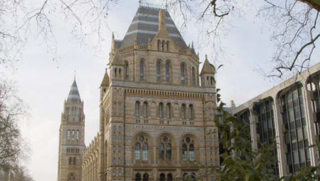 Pan-of-The-Natural-History-Museum-in-London