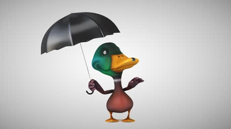 Fun-Duck-and-Umbrella-Animation